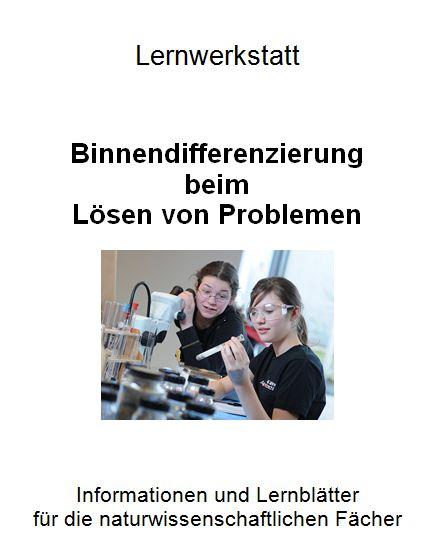 Lernwerkstatt Problemlösen